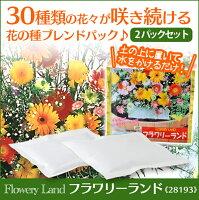 花の種ブレンドパックフラワリーランド28193【2パックセット】