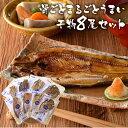 NHK あさイチで紹介★ キシモト まるとっと 干物セット