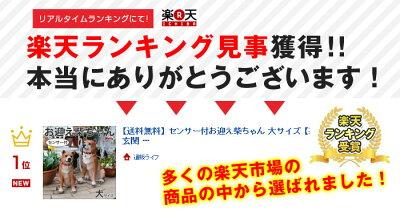 センサー付お迎え柴ちゃん大サイズ【新聞掲載】