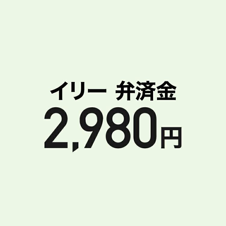 【弁済金】イリー本体