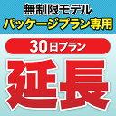 【延長専用】一時帰国者向け専用レンタルパック 30日 wif