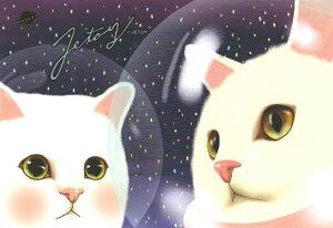 【jetoy】【choochoo】【アウトレット】猫のポストカード 宇宙