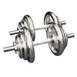 【送料無料】クロームダンベルセット40kg[WILD FIT ワイルドフィット] プレート ダンベルシャフトフィットネス 上腕筋