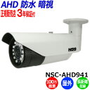 NSS 防犯カメラ NSC-AHD941 屋外 100万画素...