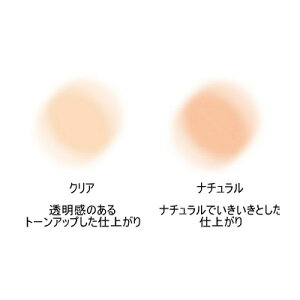 エクスボーテハイエンドルース8g※パフ付【カラー】