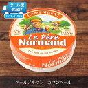 ペールノルマンカマンベール白カビチーズ