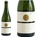 カタシモワイナリーたこシャンスパークリング2019デラウェア 日本ワイン 産地 大阪府 ワイン 家飲み お誕生日 ギフト お祝い 750ml