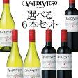 【送料無料】チリワイン・バルディビエソ選べる6本セット!コスパ抜群のチリワインを自由に組み合わせよう! 750ml×6本 【コスパワイン】【割引】【SALE】