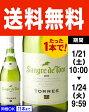 ◆送料無料◆サングレ・デ・トロ・ブランコ[2015]トーレス(白ワイン)[Y][P]