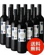 【送料無料】エストラテゴ・レアルNVドミニオ・デ・エグーレン12本セット(赤ワイン)(同梱不可・送料無料)(代引き手数料・クール便は別途費用が掛かります)[Y][A][P]