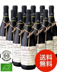 【送料無料】モンテプルチアーノ・ダブルッツォ[2013]ザッカニーニ12本セット(赤ワイン)(同梱不可・送料無料)(代引き手数料・クール便は別途費用が掛かります)