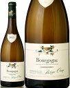 ボデガス セラジャ バジャネグラ ブランコ (白) 750ml瓶 x 12本ケース販売 (スペイン) (白ワイン) (辛口) (MA)
