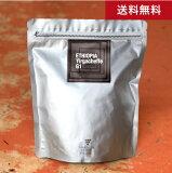 ●送料無料 500g エチオピア イルガチェフェ G1(コーヒー) (ワイン(=750ml)10本と同梱可)