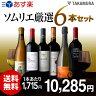 【送料無料】【第115弾】ワインの専門家『ソムリエ』お薦め!ワンランク上の欲張り6本泡1白1赤4本 ワインセット(追加6本同梱可)(代引き・クール便別途)[T][P][H]