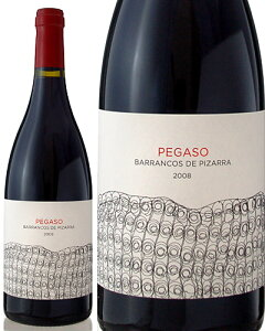 ペガソ・ピサーラ[2008]テルモ・ロドリゲス(赤ワイン)[S]