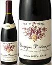 ブルゴーニュ・パストゥグラン[2009]ディジオイア・ロワイエ(赤ワイン)[S]