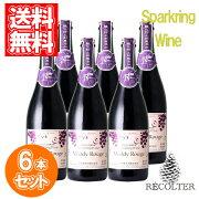 蒼龍葡萄酒マディコンコードNVお得な6本セット酸化防止剤無添加日本山梨スパークリングワイン750mlランブルスコのような