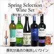 【送料無料】<春限定> 春を楽しむワインセット(赤3、白3、食材1)【あす楽対応_関東】