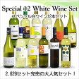 【送料無料】 <第36弾> スペシャル白ワイン12本セット(白12本) ※同梱不可【あす楽対応_関東】