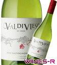 旨安ワインの楽園!チリの果実味たっぷりバルディビエソ ソーヴィニヨン・ブラン