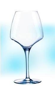 ソムリエ・フランス ワイングラス・オープンナップ・プロテイスティング