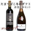 【うきうきワインのお歳暮】感謝の気持ちを込めて!赤泡2本セット・3000円セットA・(ご希望の方には無料ギフト箱・無料ラッピング・無料のし)