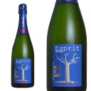 【6本以上ご購入で送料・代引無料】アンリ ジロー シャンパーニュ エスプリ ナチュール ブリュット アンリ ジロー家 AOCシャンパーニュワインアドヴォケイト誌&ワインスペクテーター誌で驚異の92点獲得!Henri Giraud Champagne Esprit Nature Brut AOC Champagne