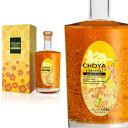 【箱入り】CHOYA ゴールドエディション 500ml 金箔入り リキュール 梅酒