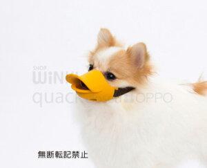 【テラモト】【OPPO】OPPO quack clesed(クアッククローズド・Sサイズ)口輪にみえない口輪