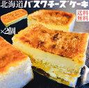 バスクチーズケーキ 2個セット 送料無料 チーズケーキ バス