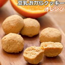 おからクッキー 【オレンジ】 1kg 送料無料 訳あり 豆乳...