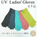 オーガニックコットン100%UVカット手袋 ショート丈指切り