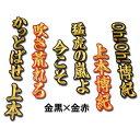 【プロ野球 阪神タイガースグッズ】上本 博紀 ヒッティングマーチ(応援歌)ワッペン