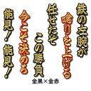 【プロ野球 阪神タイガースグッズ】能見 篤史 ヒッティングマーチ(応援歌)ワッペン