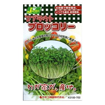 【A】カネコ種苗 スプラウト ブロッコリー メール便対応 B10-055