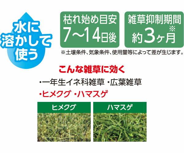 レインボー薬品シバキープPro顆粒水和剤分包2.4g(1.2g×2包)AM4
