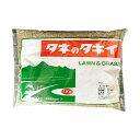 【A】タキイ種苗 芝種 トールフェスク スパイダーLS 1kg