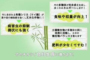 さつま竹源作の特徴