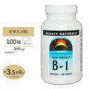 B-1(マグネシウム配合) 500mg 100粒サプリメント サプリ ビタミンB1 チアミン 健康食品 Source Naturals ソースナチュラルズ アメリカ
