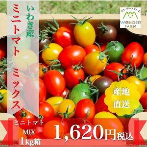 ワンダーファーム ミニトマトミックス 1kg お取り寄せ 野菜 ギフト トマト