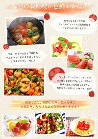 ワンダーファームサンシャイントマト詰め合わせお取り寄せ野菜ギフト