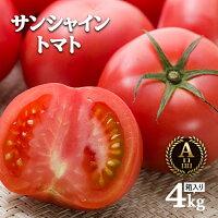 ワンダーファームサンシャイントマトA品4kgお取り寄せ野菜ギフト