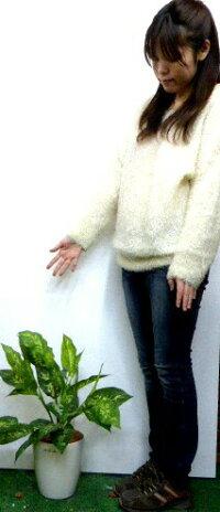 人工観葉植物ポトス【インテリアグリーン】【触媒加工】【オフィスグリーン】【造花】【送料込み】
