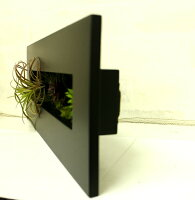 多肉植物【人工観葉】【触媒加工】【送量無料【【高さ40cm幅15cm暑さ4.5cm】