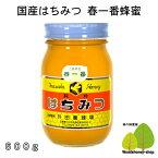 国産はちみつ生産直売 春一番蜂蜜600g【純粋非加熱】広島県産・国産蜂蜜