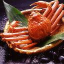 【送料無料】【身入り抜群のA級品!】カナダ産ボイルズワイガニ姿・約750g×1尾 冷凍ズワイ蟹