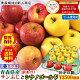 りんご 訳あり 10kg箱【クール便対応】りんご サンふじ シナノゴールド ミックス箱りん…