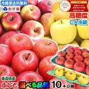 クール送料無料★あす楽 青森りんご 高糖度ふじを始め選べる品