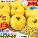 りんご 5kg 青森りんご 5キロ箱 家庭用 訳あり【クール便対応】あす楽青森 シナノゴールド 5kg箱ご家庭用 訳あり