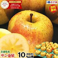 青森りんごサン金星10キロ箱